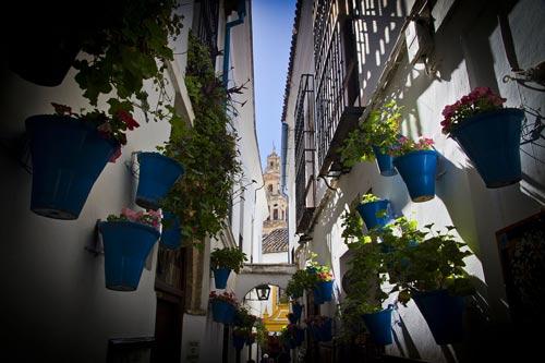 Reportaje de Fotos de Matrimonio en la Judería de Córdoba
